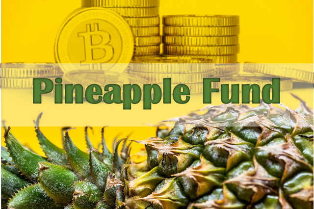 The Pineapple Fund